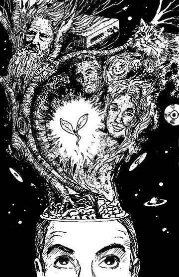 Merlin Books Illustration 2