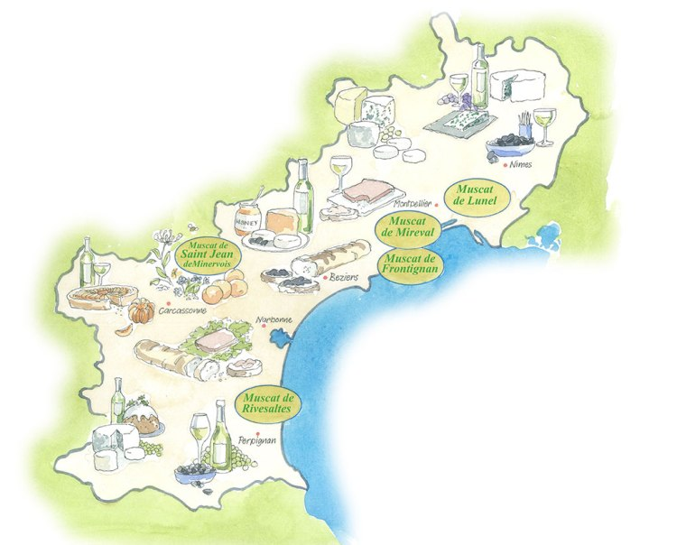 Map of Muscat Wines Illustration