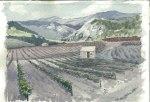 Villerambert Vineyards Landscape